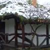 Un bucureşetean şi-a făcut casă eco la Băile Olăneşti