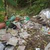 Groapă de gunoi în Centrul Râmnicului, lângă Primărie!