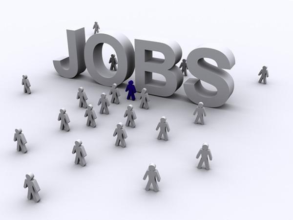 11 locuri de muncă în Râmnicu Vâlcea