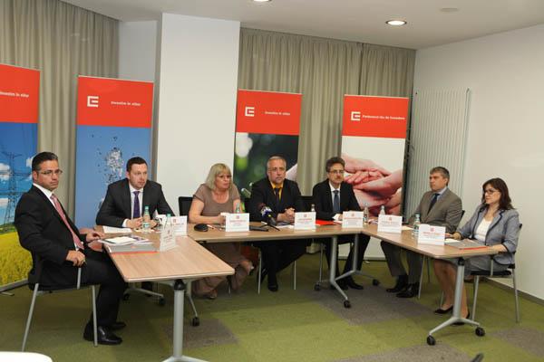 Grupul CEZ in Romania face cunoscute performantele financiare inregistrate in anul 2012