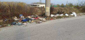 FOTO Ieșiți, Doamne iartă-mă, din Primărie și igienizați orașul! Chiar nu vă e rușine? Nu vă simțiți?