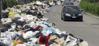 Deșeurile menajere din Râmnicu Vâlcea sufocă Bucureștiul