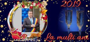 Mesajul primarului din Lungești – Tiberiu Costea