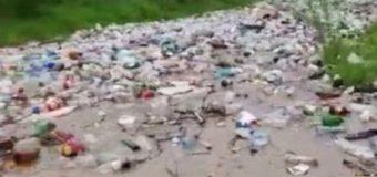ANAR-ABA Argeș Vedea ecologizează după romi pentru că autoritățile locale se găsesc într-un somn profund…